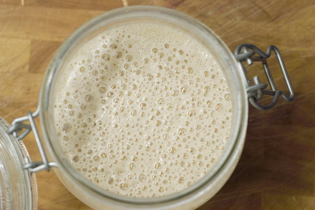 Maintain Your Starter | Sourdough Starter Recipe For Baking Bread On The Homestead | Homesteading | Best Sourdough Starter
