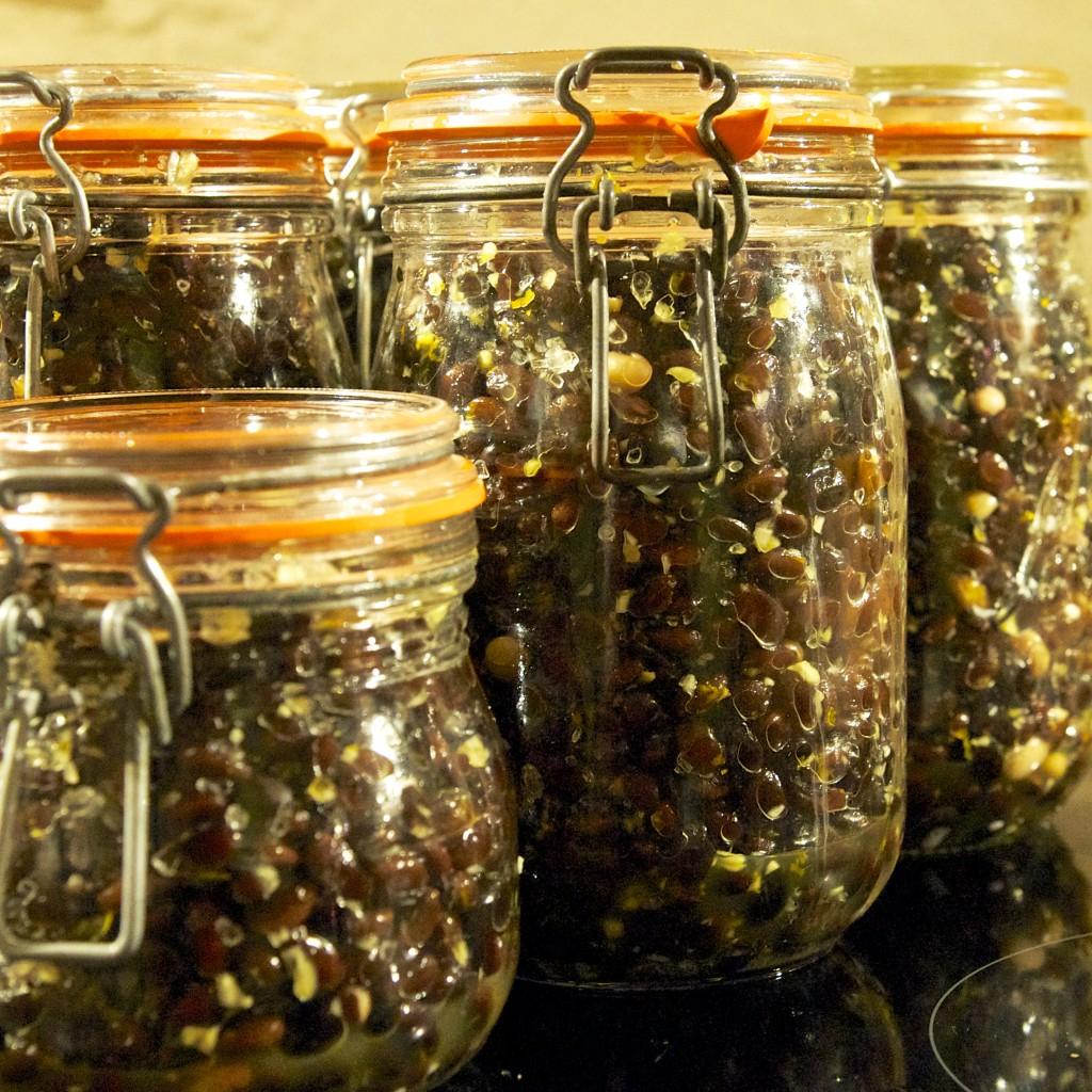 Fermented Black Beans