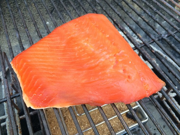 Salmon, ready for smoking
